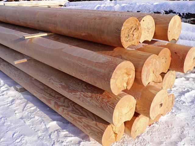 бревна из зимнего леса