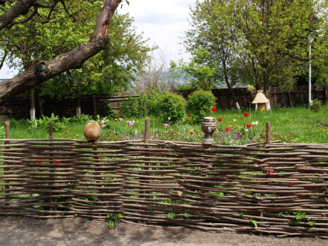 плетенный дачный забор