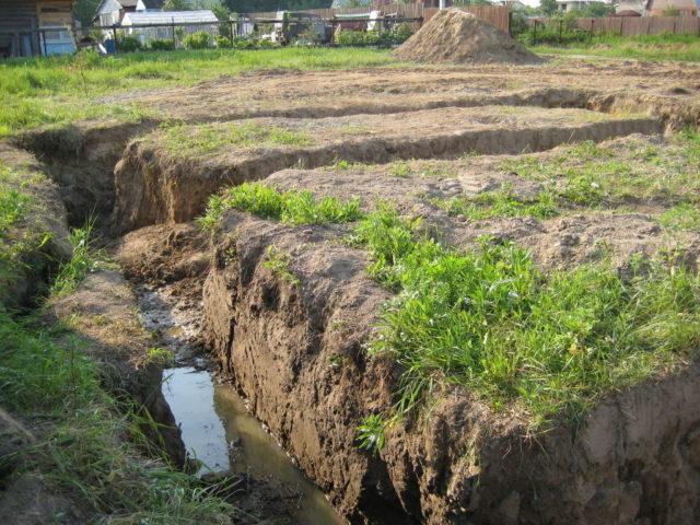 грунтовые воды на земельном участке