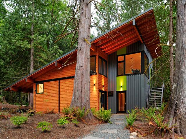 загородный дом с односкатной крышей