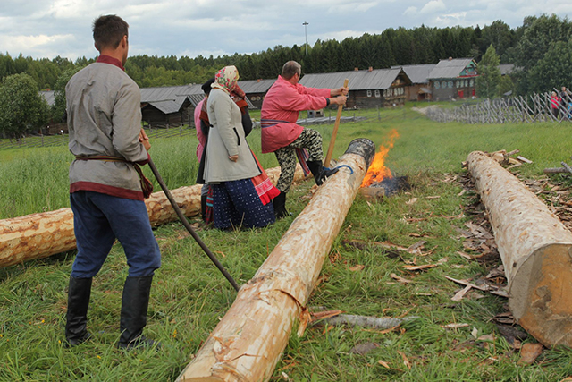 метод защиты древесины от гниения